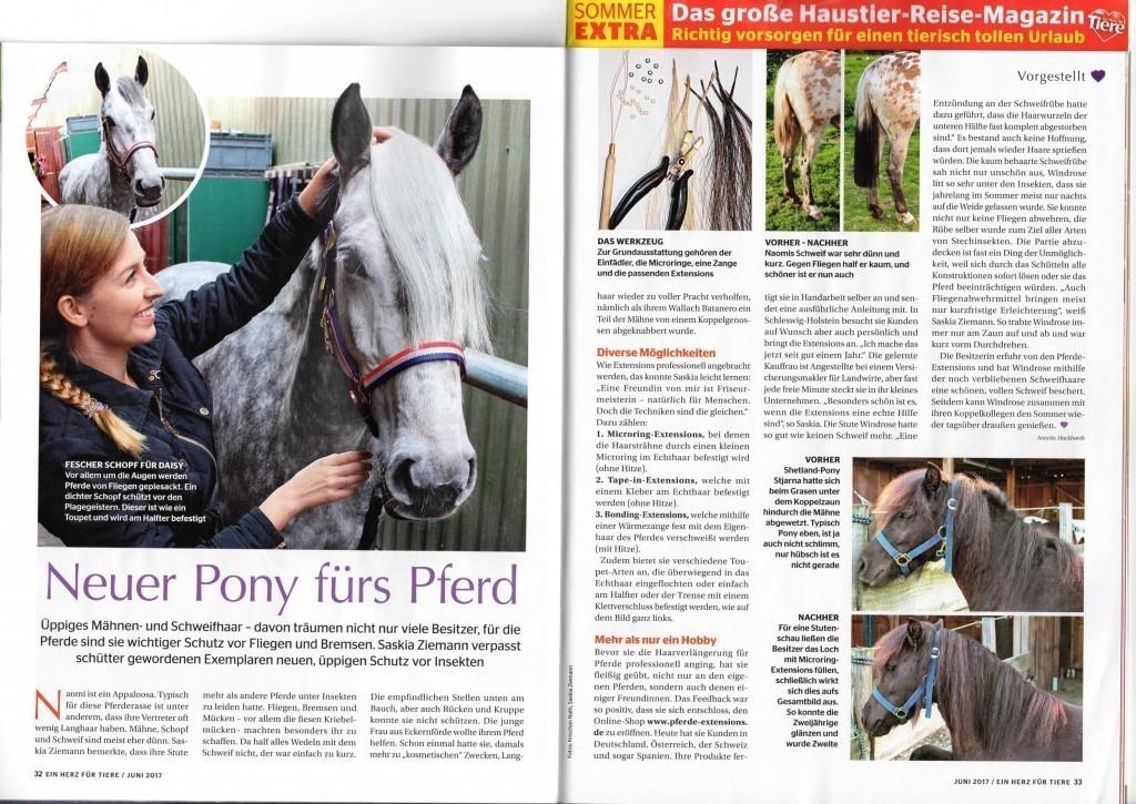 Pferde Zeitung