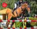 Pferd + Sport Zeitungsartikel November 2019_batanomi